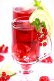 Refreshing summer ice tea Stock Images