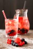 Refreshing summer ice tea or lemonade with fresh homemade fruits Royalty Free Stock Photos