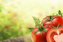 Refreshing tomatoes elements. Tomatoes on wooden tables in 3d illustration, bokeh background Stock Photos