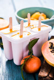 Refreshing treat, exotic fruits lolly, popsicle Royalty Free Stock Image