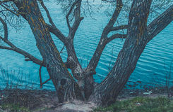 Refreshing view of the wide lake with stony shore and clear blue water. Bridge over river. Trees near the water.  Royalty Free Stock Image