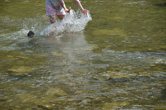 Refreshing walk in river in hot sommer. With dog stock photo