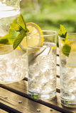 Refreshing water with lemon and mint Royalty Free Stock Photos