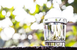 Refreshing water in transparent glass  against with greeneries b Royalty Free Stock Photos