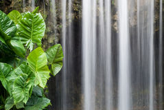 Refreshing waterfall Stock Images