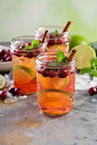 Refreshing winter drink with lime and cranberry Royalty Free Stock Photo
