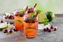 Refreshing winter drink with lime and cranberry Stock Photos