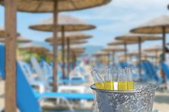 Refreshment drink of four beer bottle in bucket at big public bech. Refreshment drink of four beer bottle in bucket at big public beach with lot sun bed and Royalty Free Stock Image