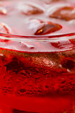 Refreshment: Ice in a glass in a Red Liquid Royalty Free Stock Photography