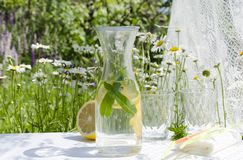 Refreshment time in the garden.Bottle of cold and fresh water with lemon and mint served on the white table outdoor stock photo