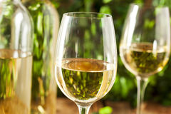 Refreshring White Wine in a Glass Royalty Free Stock Photo