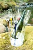 Refrigeração de Champagne Fotografia de Stock