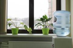 Refrigerador de água perto da janela fotos de stock royalty free