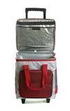 Refrigerador del bolso Imagen de archivo libre de regalías
