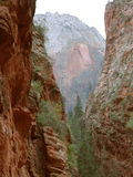Refrigerator Canyon, Zion. Image of the narrow walls inside of Refrigerator Canyon, captured in Zion National Park, Utah Stock Photos