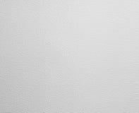 Refrigerator Door Texture Stock Image