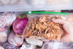 Refrigerator with frozen food. Frozen dried fruits in a package. Open fridge freezer. Meat, milk, vegetables Stock Images