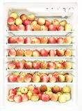 Refrigerator with several apples Stock Photos
