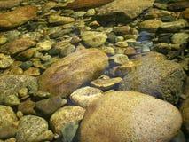 Refrigere a água desobstruída imagem de stock royalty free