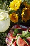Refrigerios del verano Fotografía de archivo libre de regalías
