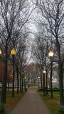 Refroidissez le chemin de chute un matin brumeux de novembre Photos stock