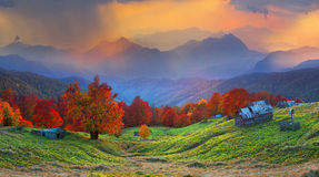 Refuge in autumn mountains. High in the mountains located Gutsulschiny tract with ancient village of shepherds, where shepherds live in the summer, cows and Royalty Free Stock Photo