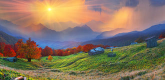Refuge in autumn mountains. High in the mountains located Huzulschyna tract with ancient village of shepherds, where shepherds live in the summer, cows and Stock Photos
