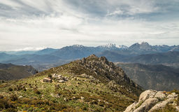 Refuge de Prunincu and snow capped mountains of Corsica Stock Image