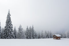 Refuge in mountain with forest on winter Royalty Free Stock Photo