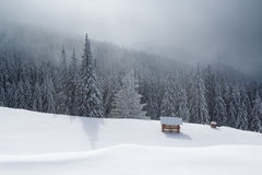Refuge in mountain with forest on winter Stock Photography