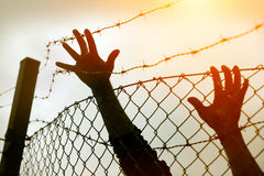 Refugee men and fence. Refugee concept Royalty Free Stock Image