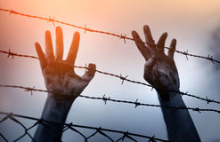 Refugee men and fence Royalty Free Stock Photography