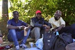 Refugees in Babska (Serbian - Croatina border) Royalty Free Stock Photography