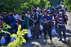 Refugees in Babska (Serbian - Croatina border). Group of refugees leaving Serbia. They came to Bapska by buses and then they leaving Serbia and go to Croatia and Royalty Free Stock Photo