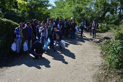 Refugees in Babska (Serbian - Croatina border). Group of refugees leaving Serbia. They came to Bapska by buses and then they leaving Serbia and go to Croatia and Royalty Free Stock Image