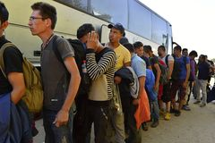 Refugees in Babska (Serbian - Croatina border). Group of refugees leaving Serbia. They came to Bapska by buses and then they leaving Serbia and go to Croatia and Stock Photos