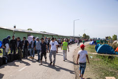 Refugees forming a waiting line in Tovarnik Royalty Free Stock Photography
