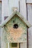 Refugio artificial de madera de la casa de la jerarquía de la colmena del abejorro Imágenes de archivo libres de regalías