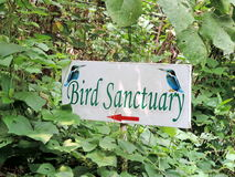 Refugio de aves de Kumarakom en Kerala, la India Fotografía de archivo