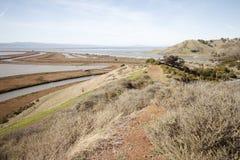 Refugio de Don Edwards National Wildlife Fotos de archivo