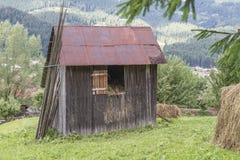 Refugio del forraje durante invierno fotos de archivo