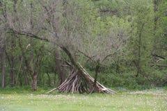 Refugio en el borde del bosque Imágenes de archivo libres de regalías