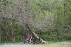 Refugio en el borde del bosque más cercano Foto de archivo