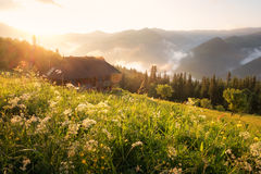 Refugio in high mountain Royalty Free Stock Photography