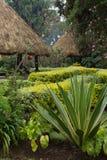 Refugios cubiertos con paja en Rwanda Foto de archivo libre de regalías