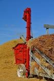Refurbished Threshing Machine. A refurbished red threshing machine is being used to thresh the oat bundles from the hayrack Stock Image