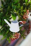 Regadera blanca miniatura del jardín en el fondo de arbustos imagen de archivo
