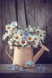 Regadera con el ramo del verano de flores de las margaritas Imágenes de archivo libres de regalías