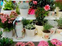 Regadera del metal para regar entre las diversas flores y plantas fotos de archivo libres de regalías