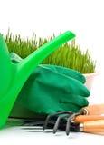 Regadera, rastrillo, pote, guantes de goma e hierba verde Fotografía de archivo libre de regalías